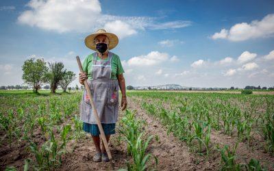 Fedepanela Conmemora el Día Internacional de la Mujer Rural.